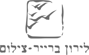 לירון ברייר צילום - לוגו